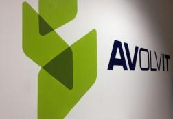 Avolvit – February 2013